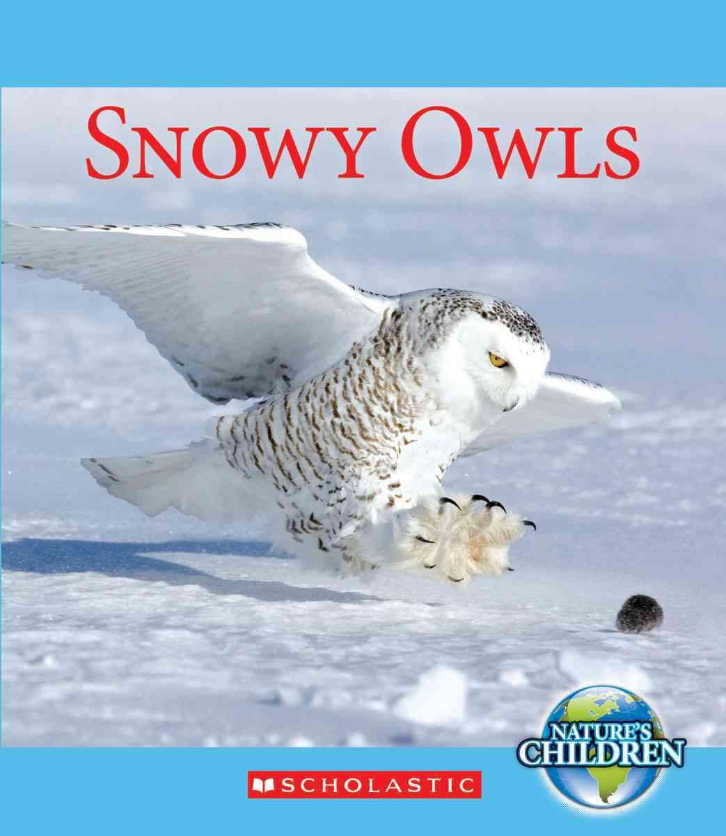 Snowy Owls By Zeiger, Jennifer